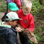 News item - Lower School working by Maiden Erlegh Lake