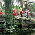 News item - Middle School at Kew Gardens