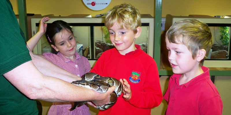 Learning beyond the school gates - at Marwell Zoo