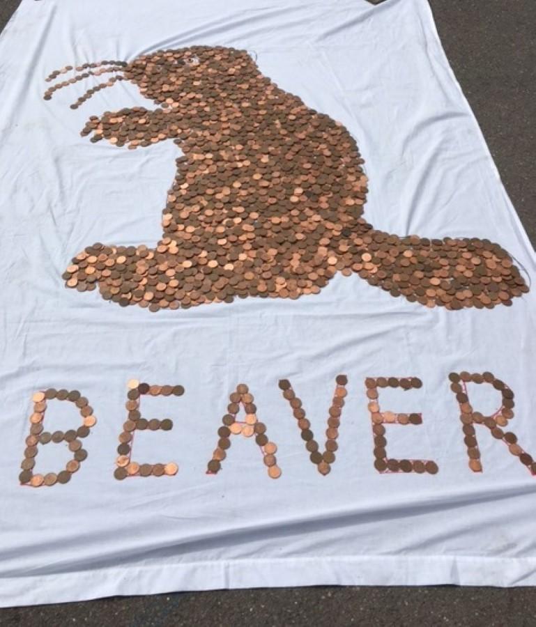 2p Coins Beaver June 17 3rd Place (Custom)
