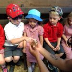 Photonews: Foundation visit Bucklebury Farm 2017