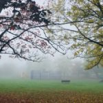 Photonews: Middle School Awesome Autumn Photography Competition Winners 2017