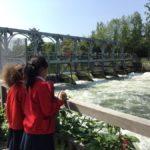 Photonews: Upper School Rivers Week - Trip to Henley 2018