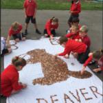 Photonews: Copper Coin Mosaics 2018